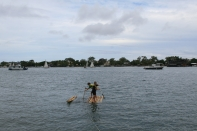 Adventures on the Noosa River