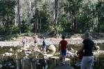 Stepping stones on Carnarvon Creek