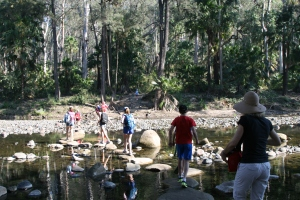 Stepping stones on Carnarvon Creek