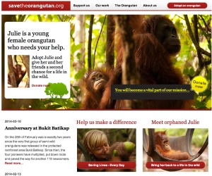 Save the orangutan - Julie