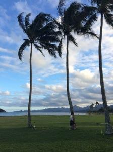 Windward Coast of Oahu