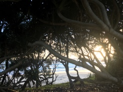 Cabarita Beach, Tweed Coast, NSW