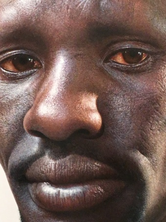 Deng - Archibald Prize 2016 finalist Nick Stathopoulos, Art Gallery of NSW