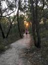 Sunset at Girraween National Park