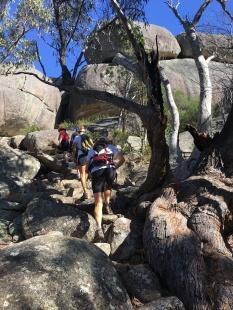 The track to Castle Rock, Girraween National Park, Queensland