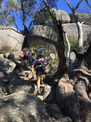 The track to Castle Rock, Girraween National Park, Queensland