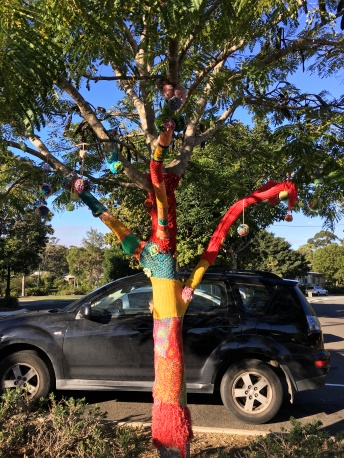 Crochet tree, Pomona, Queensland
