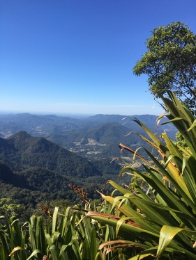 View from Mt Warning, NSW