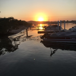 Sunrise on the Noosa River